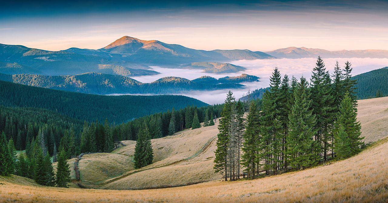 """""""Червоні карпатські гори"""" by Iifar, under CC-BY-SA-4.0"""