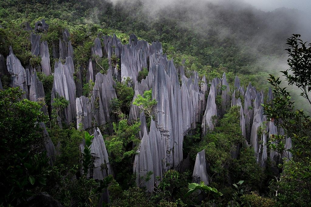 Fog slowly engulfs sheared limestone karsts near the treacherous peaks of Malaysia's Mount Api in Mulu National Park.