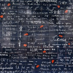 Wall of Love in Paris